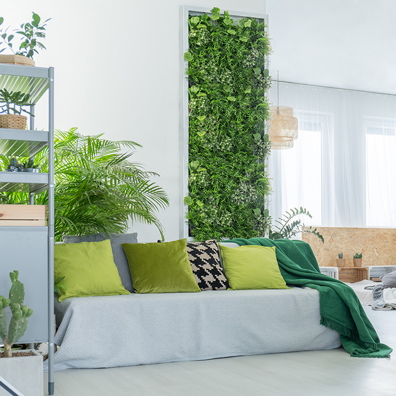 mur vegetal plante salon