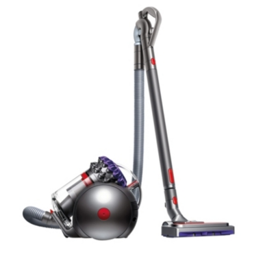 Aspirateur sans sac DYSON Big Ball parquet 2